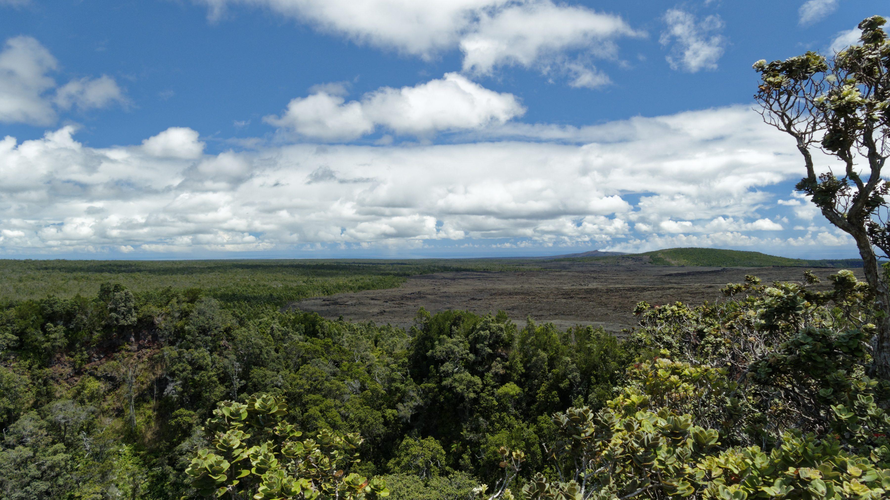 Au sud-est du Pu'U HuluHulu on aperçoit le Puʻu ʻŌʻō