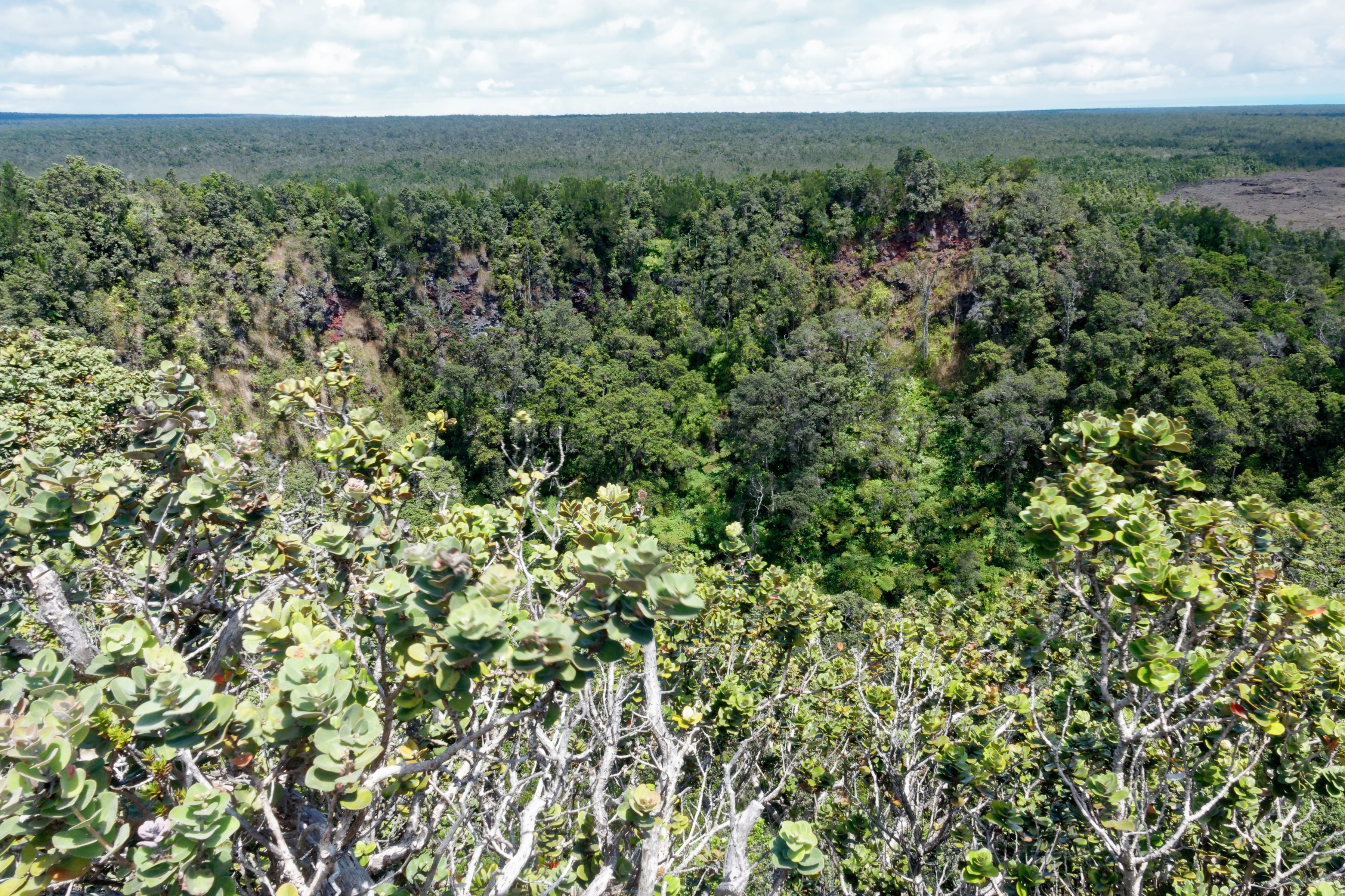 Le fond du cratère du Pu'U HuluHulu