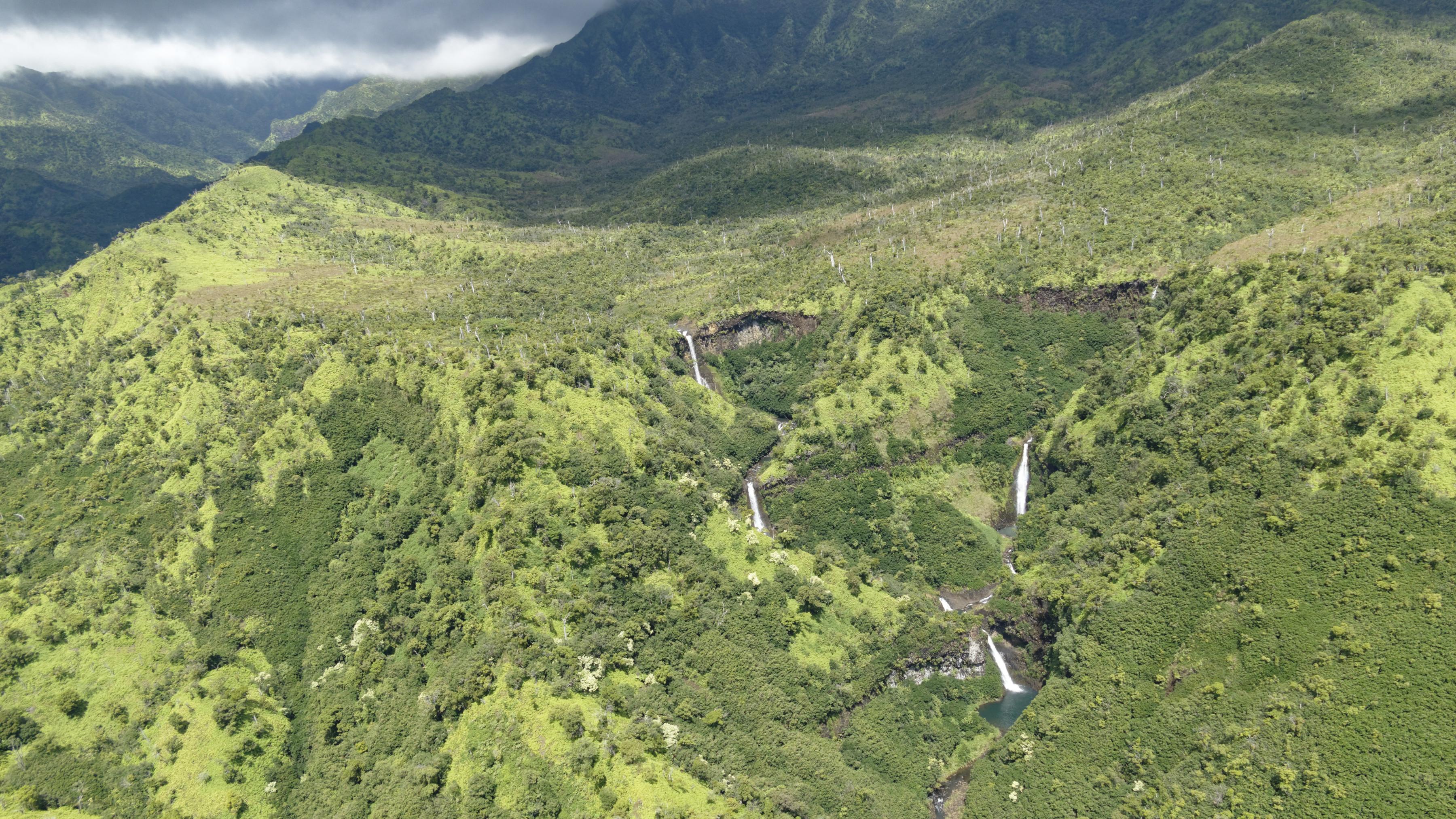 Cascades sur les contreforts de Kauai