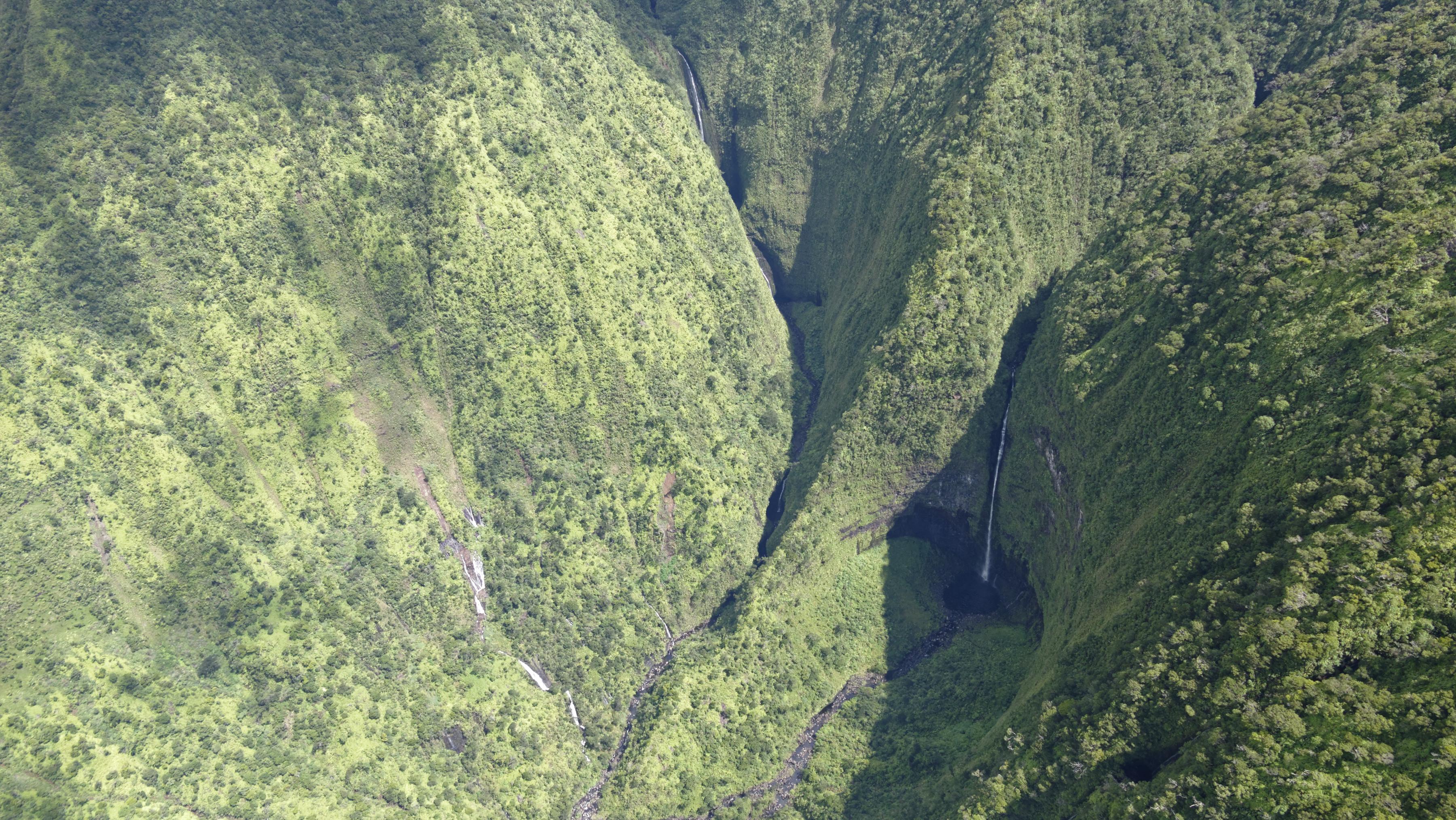 Quelques cascades au fond d'une gorge à Kauai