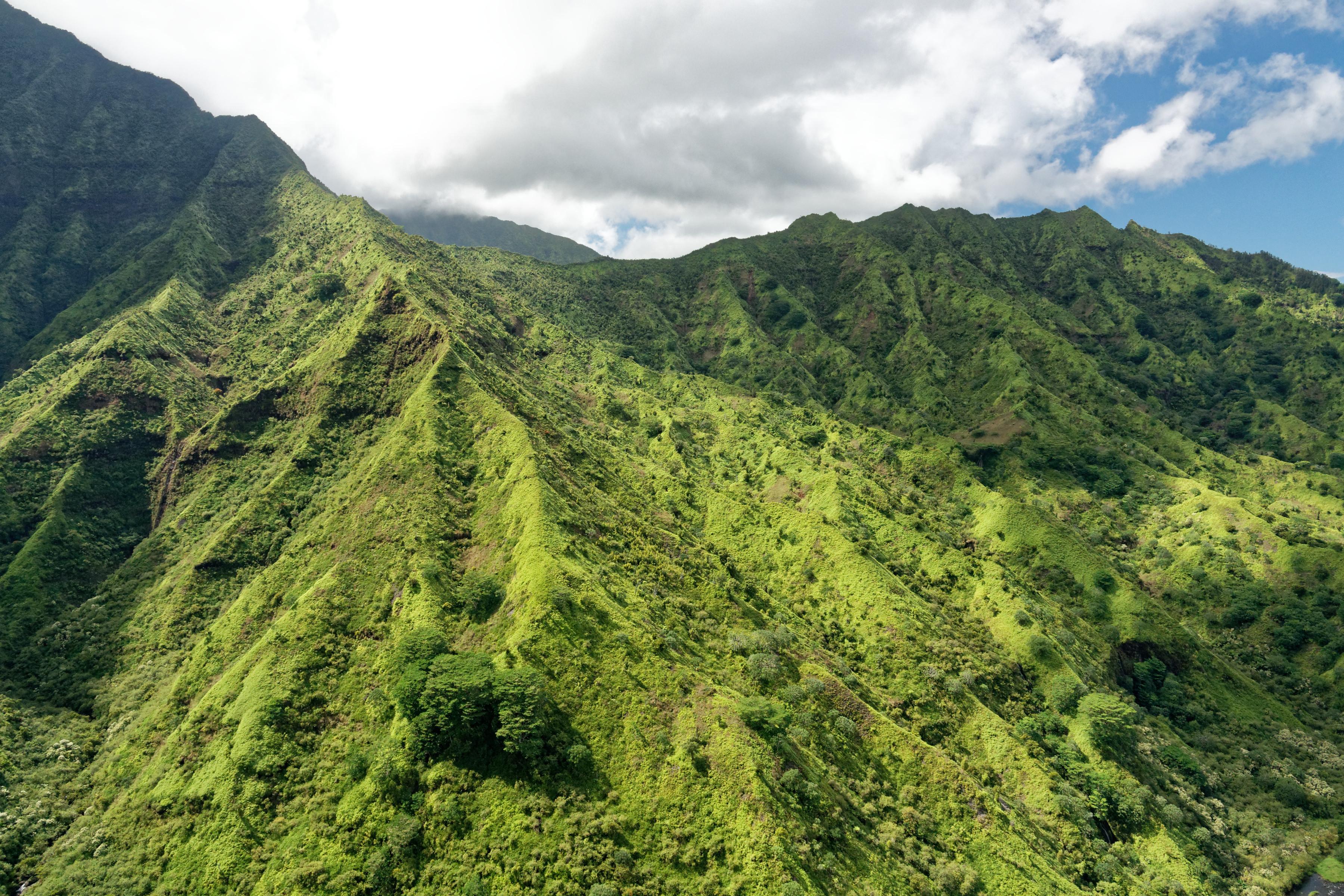 Les flancs du Waiʻaleʻale, à Kauai